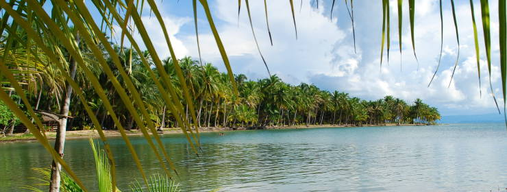 Hotels in Bocas del Toro