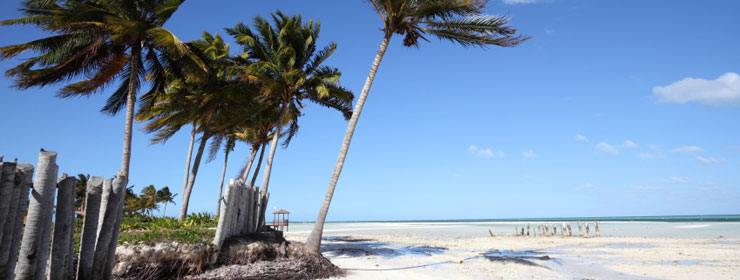 Hotels in Cayo Guillermo