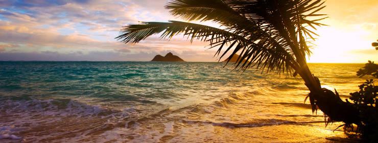 Hotels in Hawaiian Islands