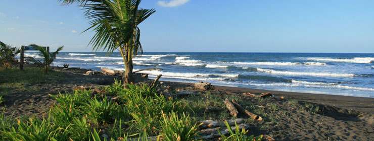 Hotels in Caribbean Coast-Tortuguero