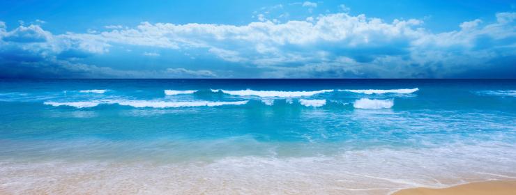 Hoteles en Playa Cala Comte